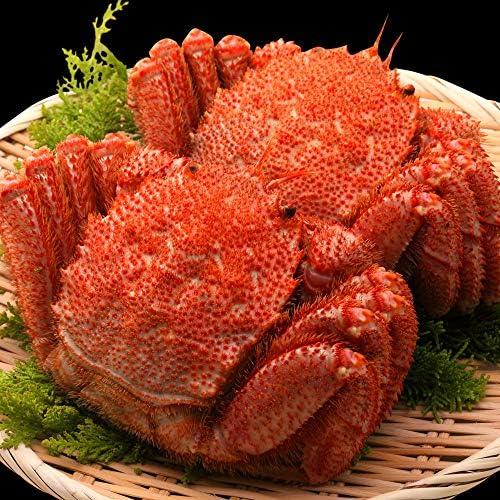 毛蟹 570g × 2尾 浜茹で 毛ガニ ボイル 毛がに カニ味噌 送料無料