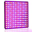 Lightimetunnel Newest 45W LED Panel Grow Light Red Blue Plant Light for Seedling Growing and Flowering