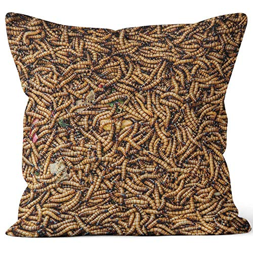 - Nine City Worms in Animal Market Throw Pillow Cushion Cover,HD Printing Decorative Square Accent Pillow Case,24