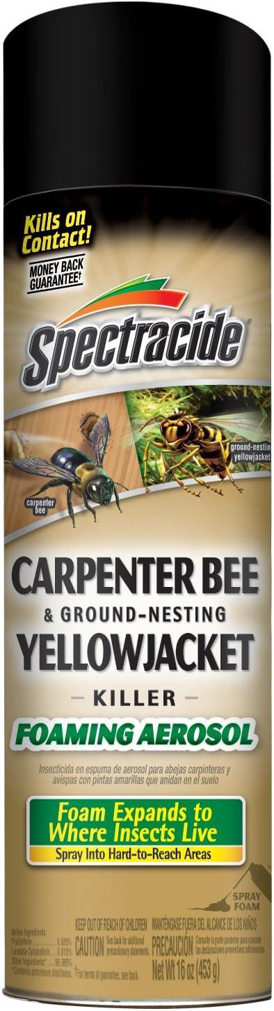 Spectracide HG-53371 Carpenter Bee & Ground-Nesting Yellowjacket Killer Foaming Aerosol, Case Pack of 12