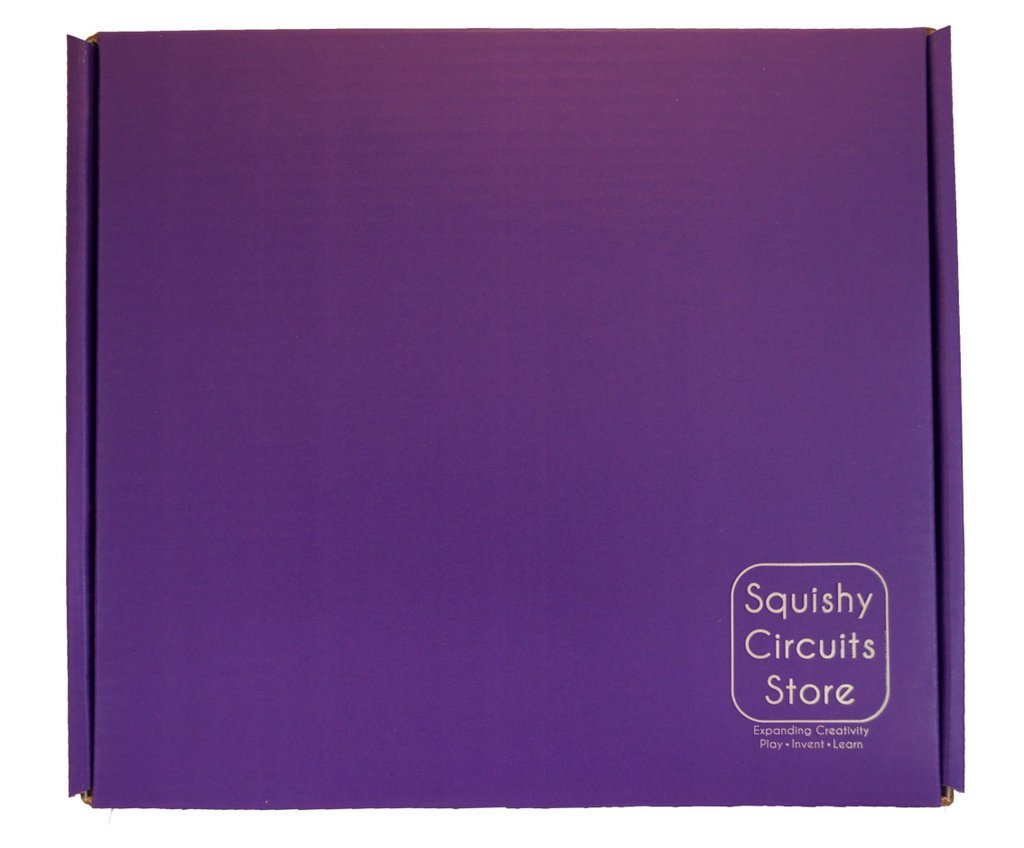 Buy Squishy Circuits Kit Online At Low Prices In India Making Conductive Dough