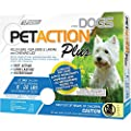 PetAction Plus Flea and Tick Treatment from PetIQ