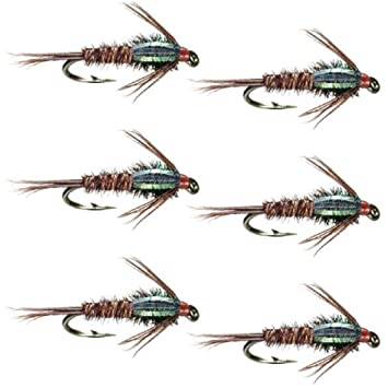 Bead Head Flashback Pheasant Tail Nymph Fly 6 Pack