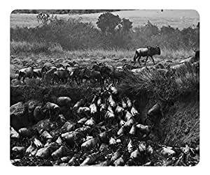 Great Migration Crossing The Mara River Kenya Mouse Pad Desktop Mousepad Laptop Mousepads Comfortable Computer Mouse Mat Cute Gaming Mouse pad