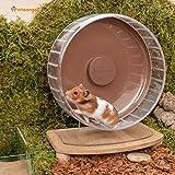 Niteangel Super-Silent Hamster Exercise