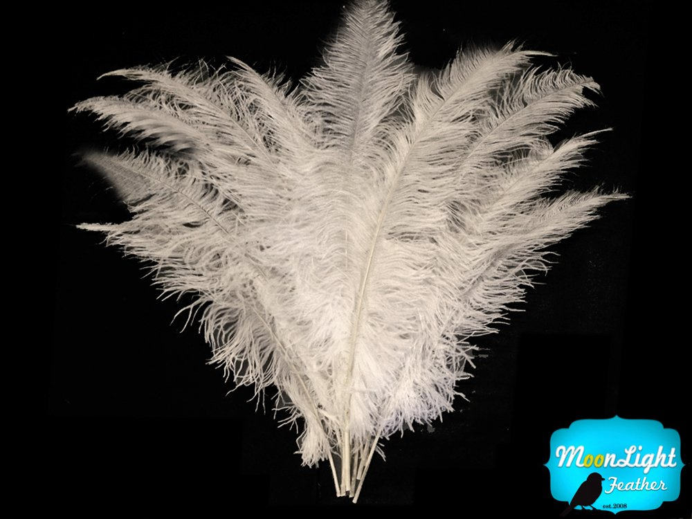 1/2 lb - WHITE Ostrich Spads Wholesale Feathers 20-28'' (bulk)