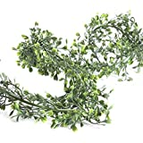 Factory Direct Craft 6' Lightweight Green Artificial Lovely Boxwood Garland for Home Decor, Floral Arranging and Designing