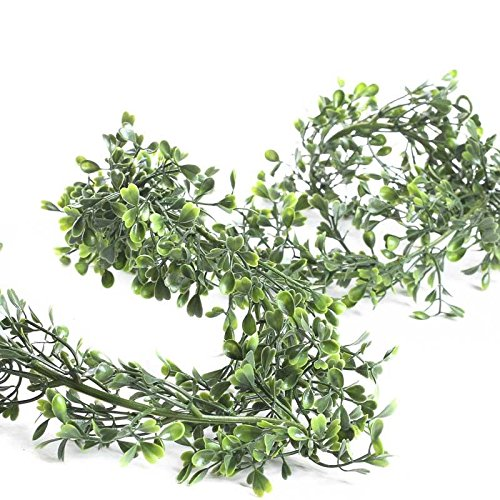 Factory Direct Craft 6' Lightweight Green Artificial Lovely Boxwood Garland for Home Decor, Floral Arranging and (Artificial Boxwood Garland)