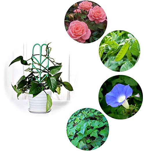 Anpatio - Enrejado de plástico para Plantas de Interior (6 ...