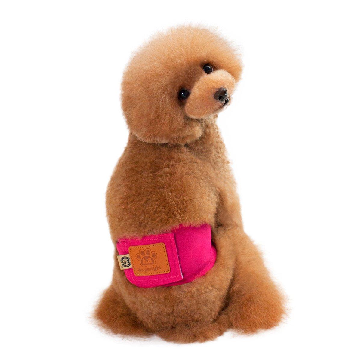 PETCUTE Premium Pack von 2 Waschbaren M/ännlichen Dog Windeln Wraps Comfort Pet Belly Band Windeln