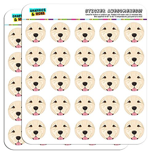 Retriever Light - Golden Retriever Face Light White Pet Dog 1