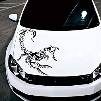 Car Window Stickers Amazon Beautiful Amr Racing Rc Graphics Kit Upgrade for  ford Raptor Svt Proline