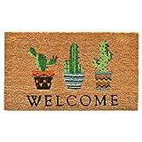 Home & More 104051729 Cactus Welcome Doormat, 17'' x 29'', Multicolor