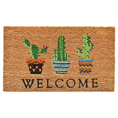 - Calloway Mills 104051729 Cactus Welcome Doormat, 17