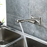 JiaYouJia Single Lever Wall-Mount Retractable Pot Filler Faucet Cold Only with Dual Swing Joints Brushed Nickel
