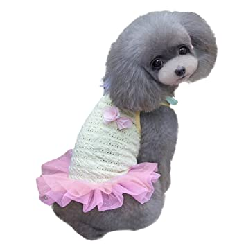 patgoal Robe de cámara de verano para perro vestido de princesa gasa tutú vestido para cachorro: Amazon.es: Productos para mascotas