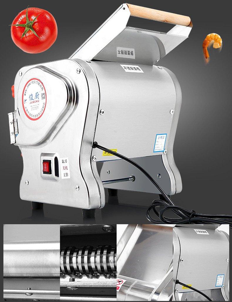 JIAN YA NA 110V 750W Electric Pasta Press Maker Noodle Machine Dumpling Skin Home Commercial