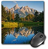 3dRose USA, Wyoming, Grand Teton National Park. - Mouse Pad, 8 by 8 inches (mp_189603_1)