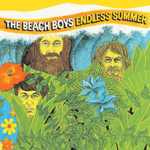 Beach Boys - Endless Summer (2 Lps) [vinyl] - Zortam Music