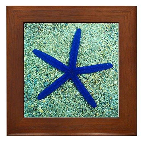 Whale Framed Tile - Framed Tile Blue Starfish on Sand