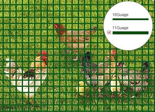 V Protek Ultimate Tomato Cage Heavy Duty 11 Gauge 6ft-Hx4...