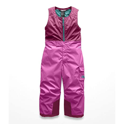 3faed068b4c2d Amazon.com  The North Face Toddler Insulated Bib  Sports   Outdoors