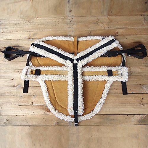 - HILASON Western Draft Size Bareback PAD, Breast Collar & Girth