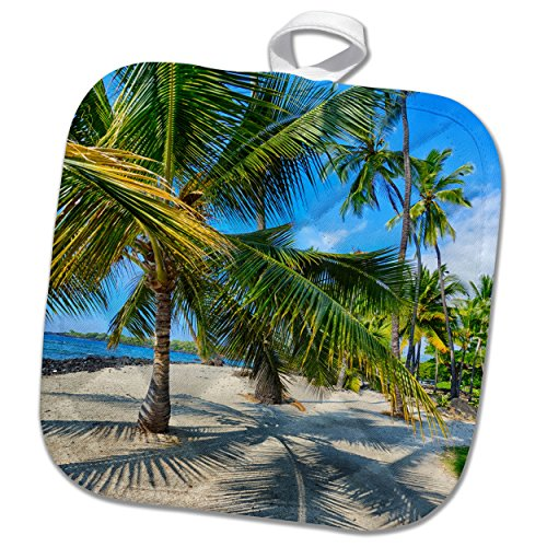 3dRose Danita Delimont - Beaches - Usa, Hawaii, Big Island. National Historic Park Puuhonua o Honaunau. - 8x8 Potholder (phl_278928_1) by 3dRose