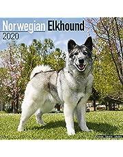 Norwegian Elkhound Calendar 2020