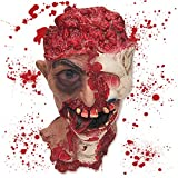 Pawliss Halloween Scary Decorations Fake Bloody Body Parts Props, Severed Cut Off Head with Eyeball Hanging