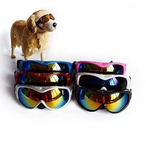 FENG High - End - Gran Perro Gafas de Sol Pet - Gafas Perro ...