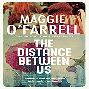 The Distance Between Us Audiobook