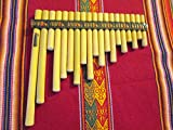 Professional Small Size Rondador Antara Pan Flaute 19 Pipes Case Included - Item in USA
