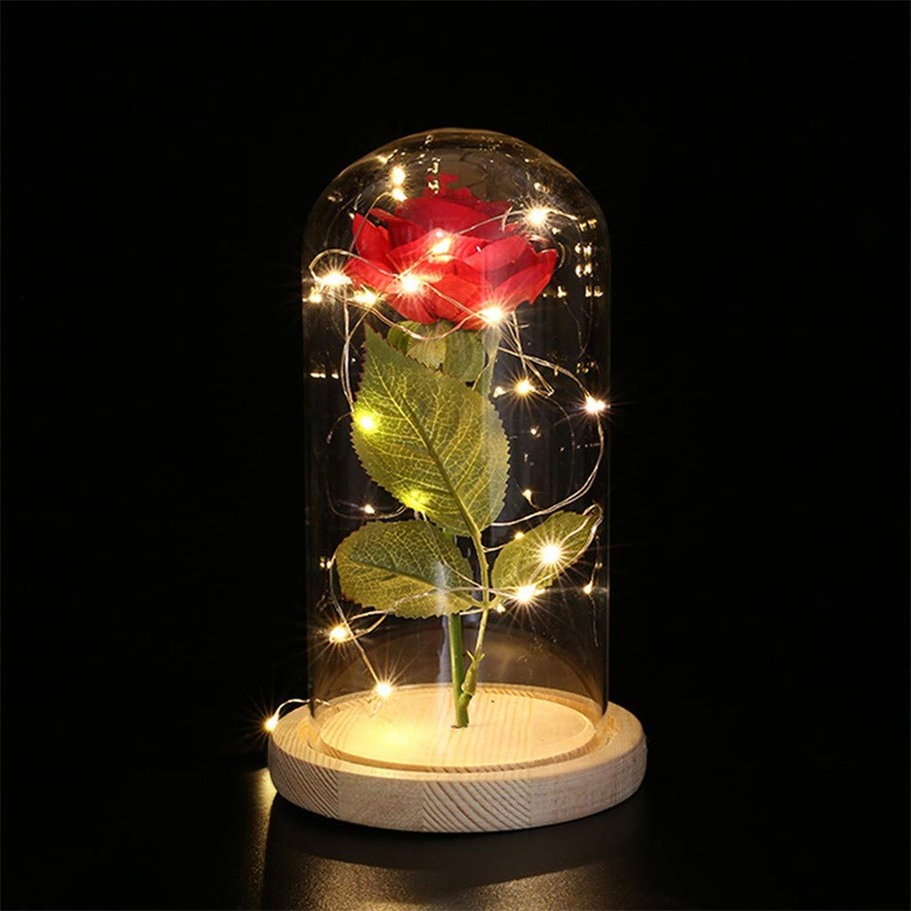 Brown Mothers Holiday Gifts LIEJIE Single Handle Rose Flower USB Copper Light Glass Cover Decoration LED Night Lights Birthday Party Decoration Lights Valentines Day