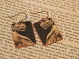 Native American earrings Hupa Woman Native American jewelry mixed media jewelry