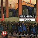 Germinal (Rougon-Macquart 13) Audiobook by Émile Zola Narrated by Éric Herson-Macarel