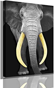 N/H Wild Animals Picture Wall Art Decor Canvas Painting Kitchen Prints Pictures for Home Living Dining Room Artwork Painting (1216inch, African Elephants)