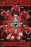 Chicago Blackhawks 2013 Stanley Cup Champions Poster 22 x 34in