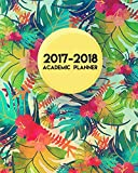 2017-2018 Academic Planner: Academic Planner, Monthly Planner, Weekly Planner - 12 Month (August 2017 To July 2018)