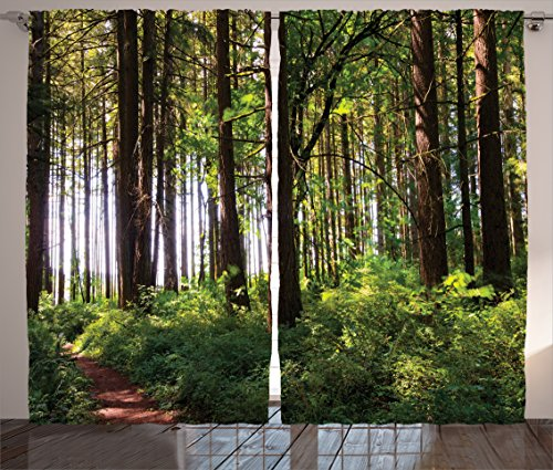 Ambesonne Farm House Decor Curtains, Pathway in a Shady Forest of Bushes and Thick Trunks Grass Unique Wild Life Scenery, Living Room Bedroom Decor, 2 Panel Set, 108 W X 84 L Inches, Green Brown