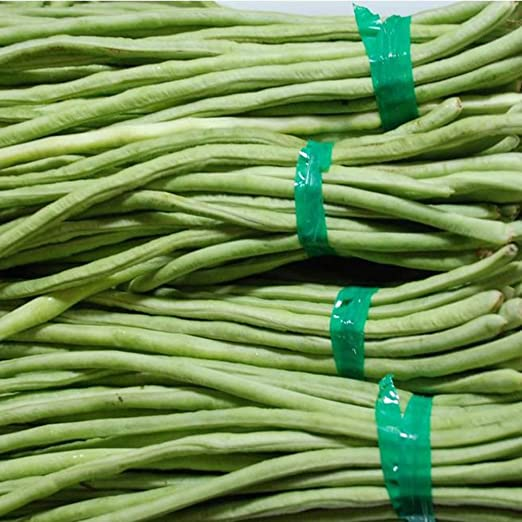 200Pcs Green Long Beans Seeds Delicious Nutritious Vegetable Garden Farm Plant