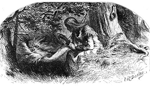 Longfellow Hiawatha Nthe Song Of Hiawatha By Henry Wadsworth Longfellow The Infant Hiawatha With His Grandmother Nokomis Wood Engraving From A 19Th Century Edition Of The Poem Illustrated By Felix OC (Best 19th Century Poems)