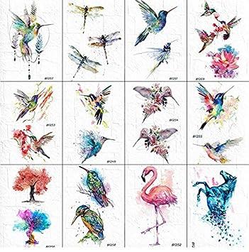Acuarela Flash Temporal Colibrí Tatuaje Mujeres Libélula Pájaros ...