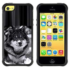 SHIMIN CAO@ Beautiful Majestic Wolf Wolfdog Dog Rugged Hybrid Armor Slim Protection Case Cover Shell For iphone 5C CASE Cover ,iphone 5C case,iphone5C cover ,Cases for iphone 5C