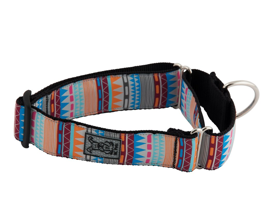 RC Pet Products 1 1/2'' All Webbing Martingale Dog Collar, Medium, Fringe