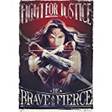 Grupo Erik editores Wonder Woman Fight For Justice Poster