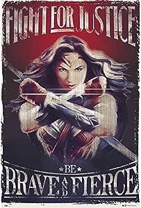 Amazon.com : Grupo Erik editores Wonder Woman Fight for