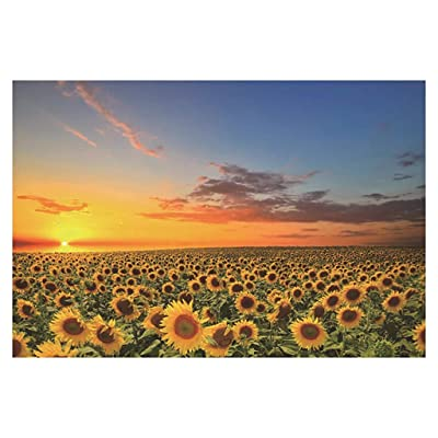 1000 Piece Jigsaw Puzzle for Adults & Kids - Sunset & Sunflower Field Landscape Educational Assembling Toys - Developing Fine Motor Skills, Memory & Shape Sorting - Gift for Birthday & Mother's Day: Toys & Games