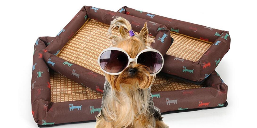 ottima selezione e consegna rapida HNBGY Grazioso Cucciolata Estiva stuoia per Cani Cuccia per Gatti Gatti Gatti Lettiera per Gatti (Marronee, M)  fino al 50% di sconto