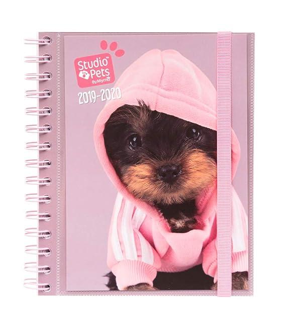 Amazon.com : Studio Pets Dogs 2019-2020 Academic Diary ...
